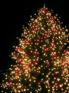 Christmas Lights Storage Ideas